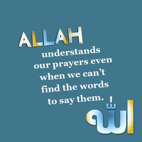 The Quran-Coaching is the best platform for the quran learning by taking online quran classes. http://www.qurancoaching.com