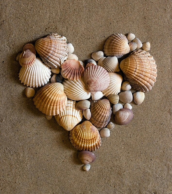 #Heart #sea #shells #sand #beach