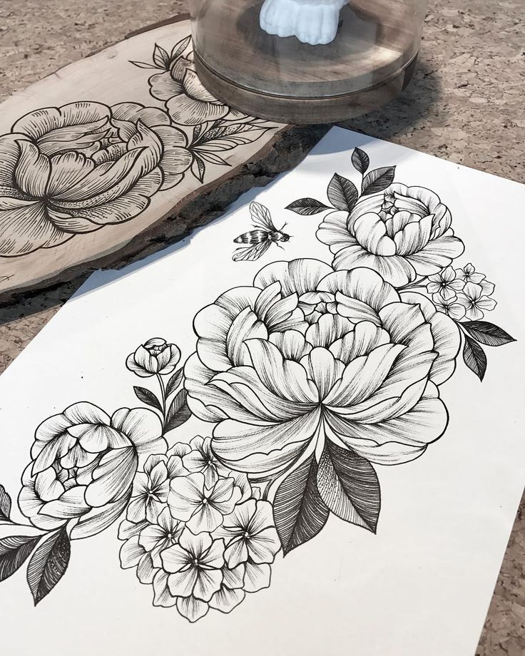 Peonies and Hydrangea composition  #linework #blackwork #sketch Done by @giulia_eightlines