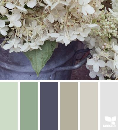 Tan kitchen pinterest tans paint colors and guest bedrooms - Flora Colors And Design Seeds On Pinterest
