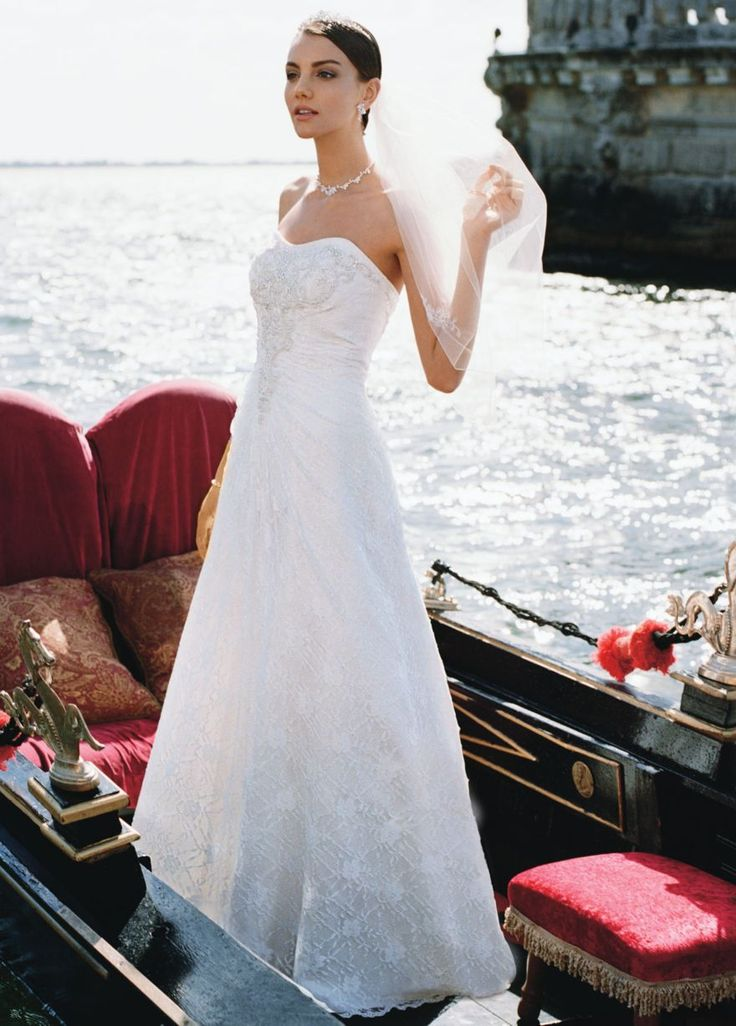 Allover Lace A Line Gown With Beaded Motif Detail David S Bridal