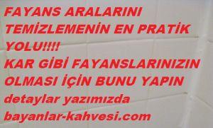 11960169_144525312558948_9213827833899659138_n