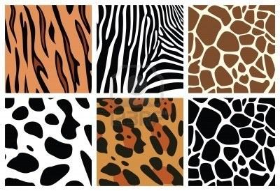 dierenhuid, structuren van de tijger, zebra, giraffe, luipaard en koe Stockfoto
