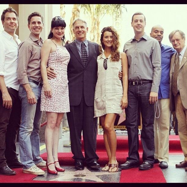 (From left to right) Michael Weatherly, Brian Dietzen, Pauley Perret, Mark Harmon, Cote de Pablo, Sean Murray, Rocky Carrol, and David McCallum