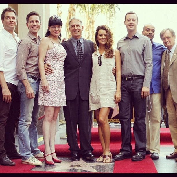 (From left to right) Michael Weatherly, Brian Dietzen, Pauley Perret, Mark Harmon, Cote de Pablo, Sean Murray, Rocky Carrol, and David McCallum