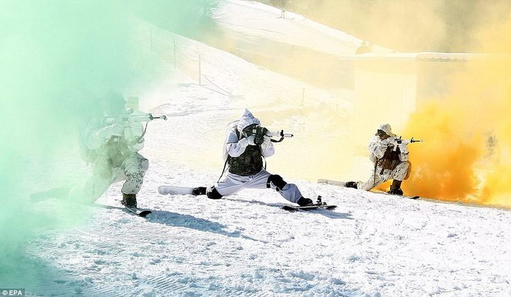 For all eventualities: Lt Col Lee Keun-soo said the marines were learning how to adapt to various combat environments, including extreme cold and snow