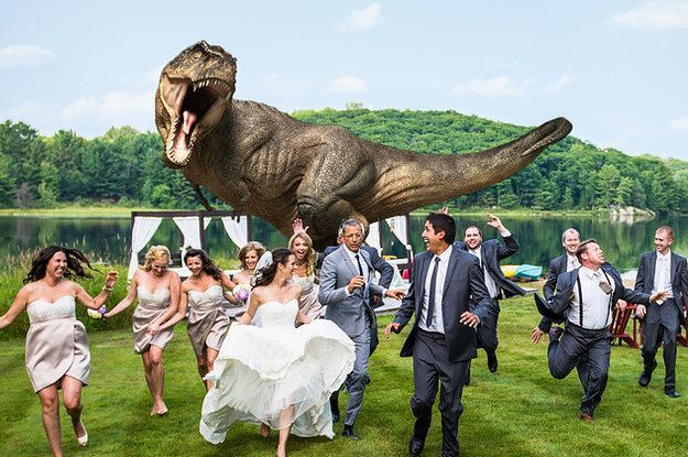 "Jeff Goldblum Recreates ""Jurassic Park"" Shot For The Coolest Wedding Photo Ever"