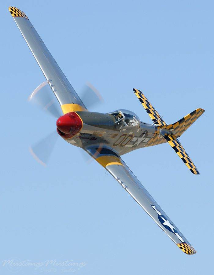 p51 d mustangs essay This is an essay that i wrote in school for persuasive f4u vs p-51 essay corsair vs mustang the f4u corsair is a better airplane than the p-51 mustang.