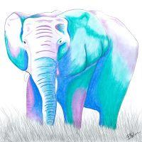 Elephant - purple By Briony Nolan www.brionynolan.com