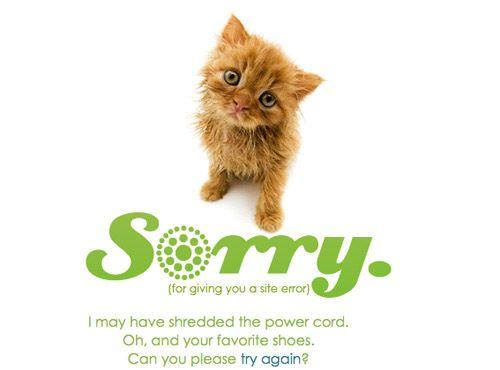 Cute kitten 404!