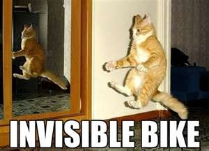 "... ""Invisible Bike"" Lolcat image from I Can Has Cheezburger"