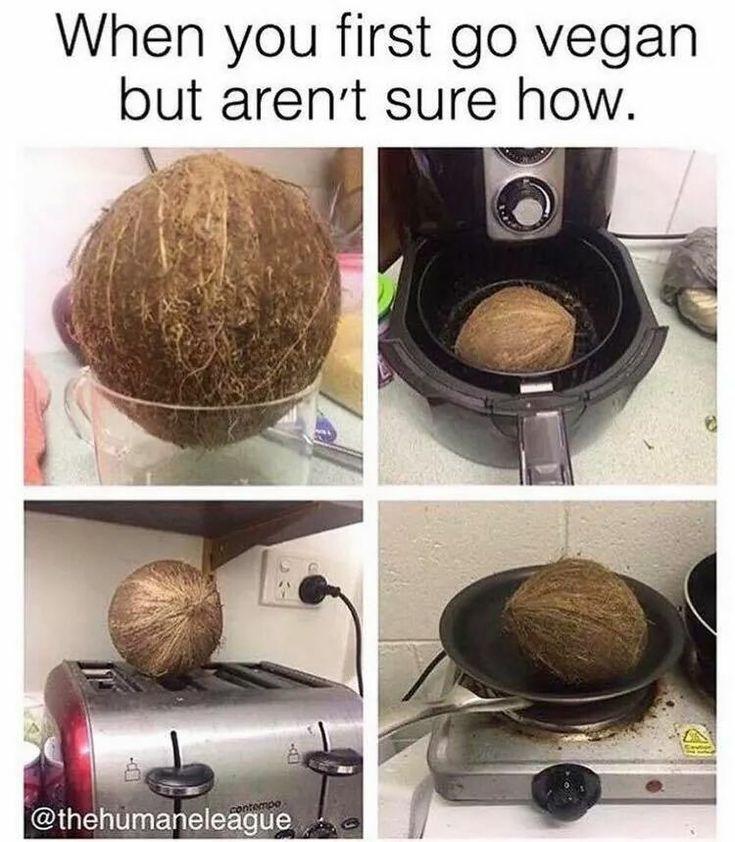 Essen Meme