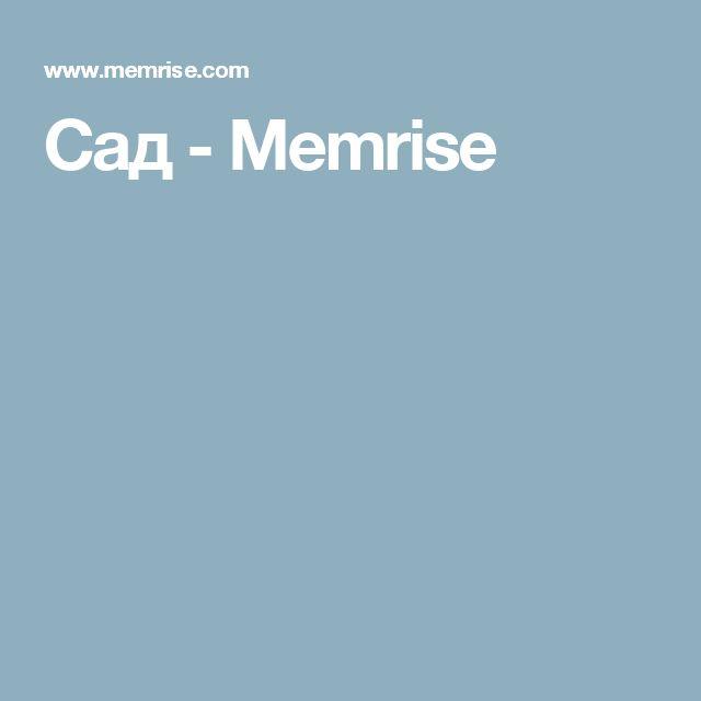 Сад - Memrise
