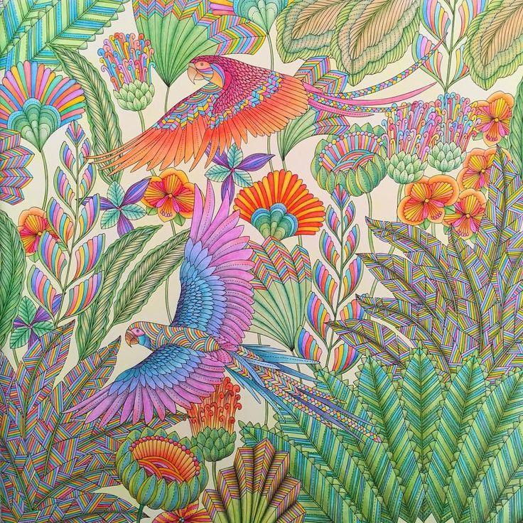 Coloringbook Tropicalwonderland Tropical ParadiseAdult ColoringColoring BooksAnimal KingdomBook ArtSocial ArtworkingColored Pencil TutorialSecret