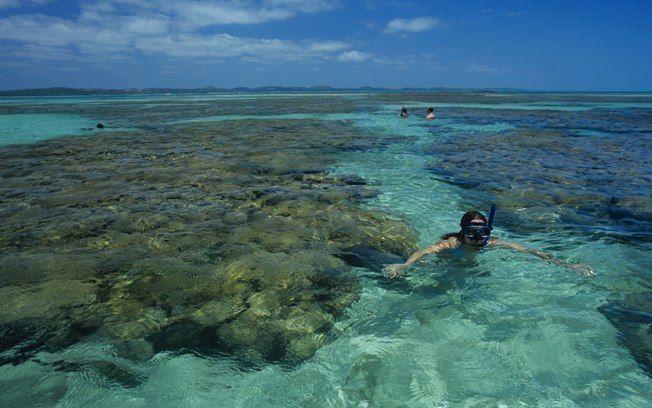 Maragogi: mergulho no Caribe brasileiro - Destinos Nacionais - iG