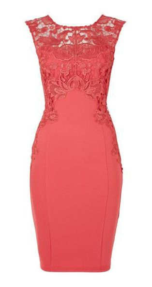 Lipsy Lace capped sleeved bodycon dress, #Coral find more women fashion ideas on www.misspool.com