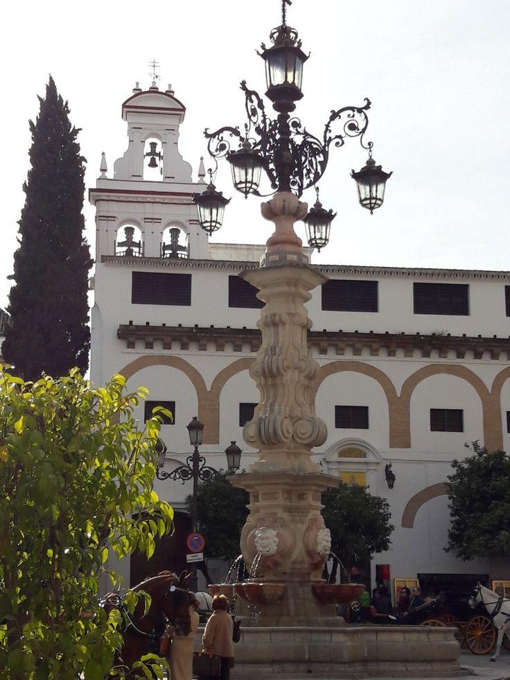 Sevilla. Plaza Virgen de los Reyes.