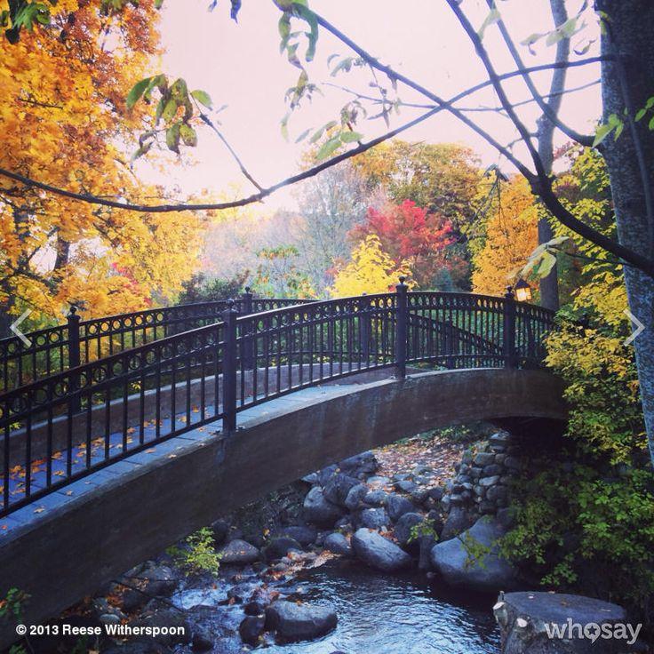 | ON SET | Good morning from Ashland, Oregon #gettingWILD