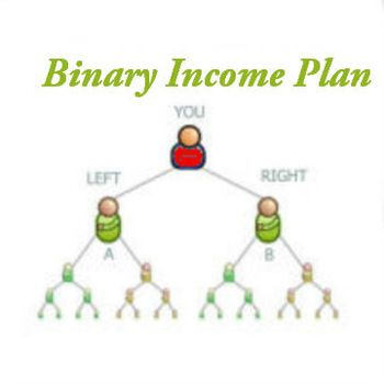 Get software solution for mlm binary plan.