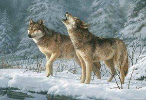Раскраски по номерам серые волки 2