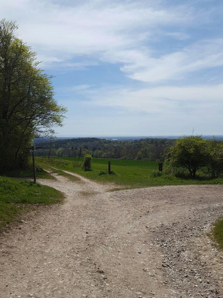 Bignor hill trek to slindon