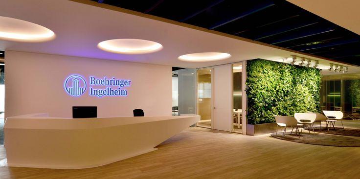 Green Fortune plantwall with curved side, vertical garden, office, entrance, reception, plants, Dubai, curved, groene wand, plantevæg, växtvägg, ,kasviseinä, zöldfal  Pflanzenwand, verticale tuin