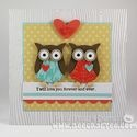 owl love: Colors Combos, Stamping Owl, Color Combos, Su Owl, Owl Punch A Palooza
