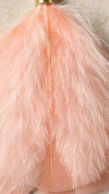 Pink | Pastel | Rosé | Salmon | Pinku | Rozovyy | Rosa | ピンク | розовый | Rosado | Color | Texture | Style |  Peach colored feather