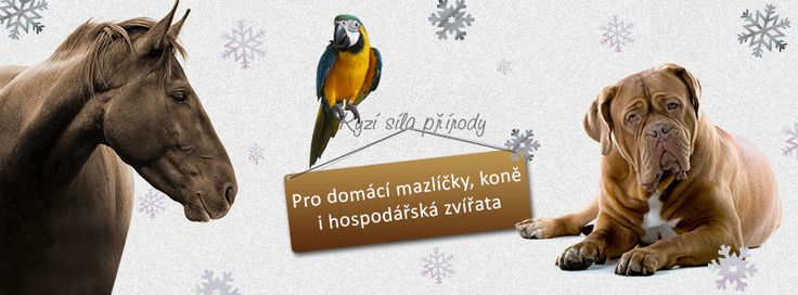 Krásně nám sněží :-)