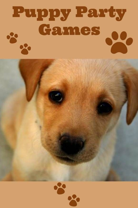 Puppy Party Games For Kids My Kids Guide Dog Themed