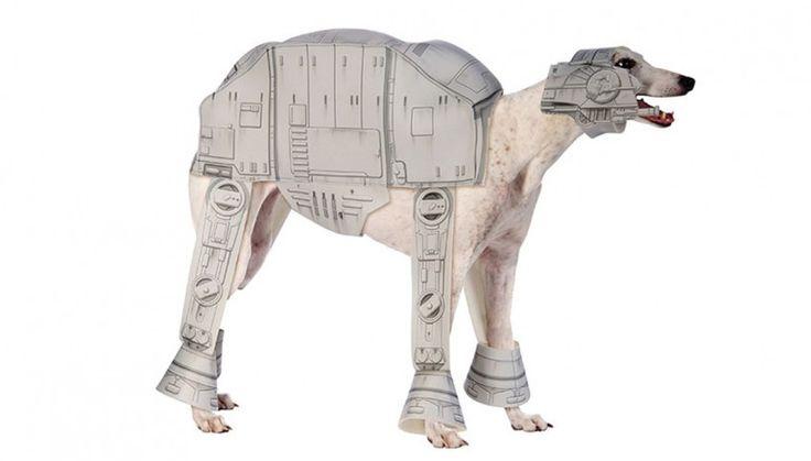 Halloween : Grâce à ce déguisement, transformez votre chien en véritable AT-AT !