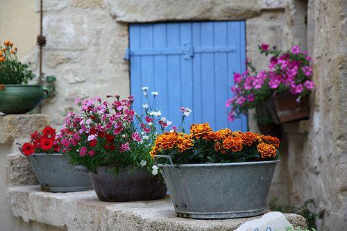 Tin planters: Doors, Window, Color, Outdoor, Gardens, Flowers, Container Gardening