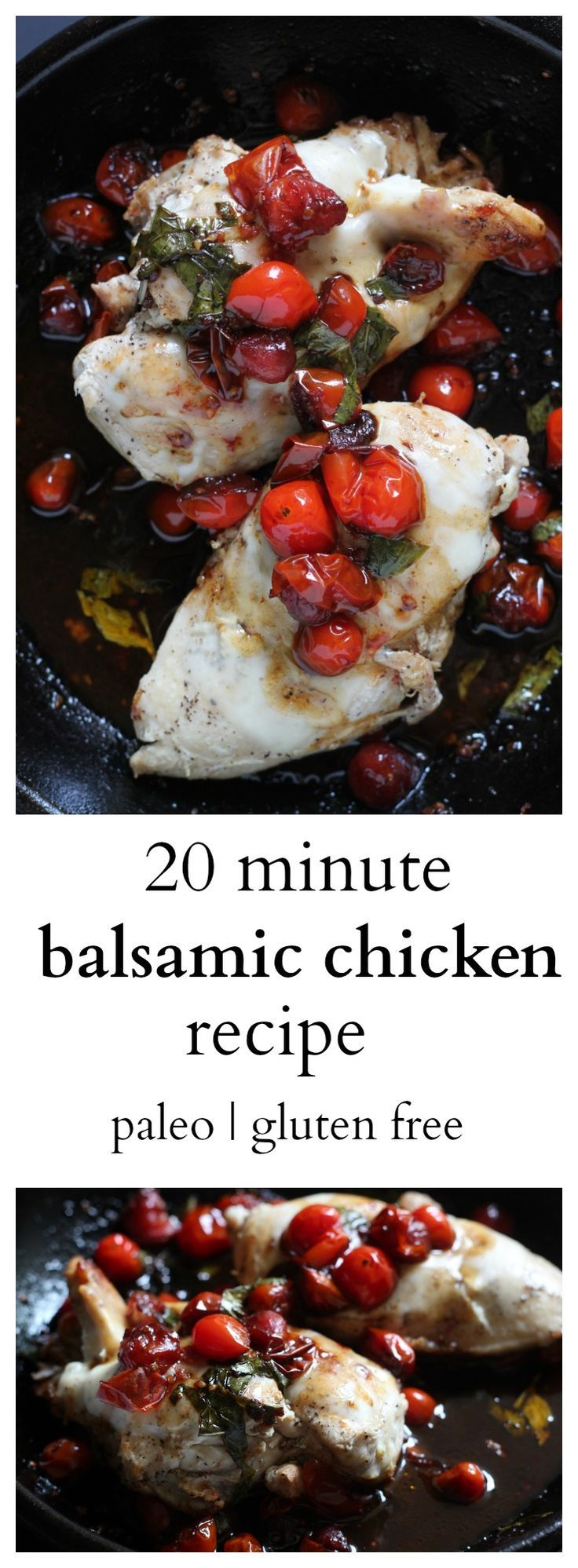 This recipe is SO easy to make, incredibly tasty, Paleo, and gluten free. A recipe you will make over and over again.