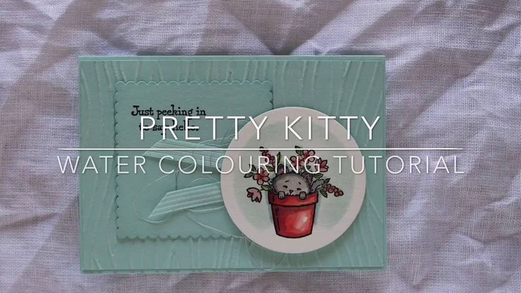 Stampin' Up! Pretty Kitty Card - Water Colouring Video Tutorial by Carolyn Bennie - Australian Independent Stampin' Up! Demonstrator See full product list at carolynbennie.com x Carolyn