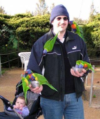 Canberra Walk In Aviary
