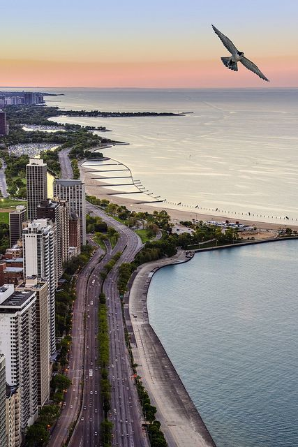 Chicago. Great shot with the seagull
