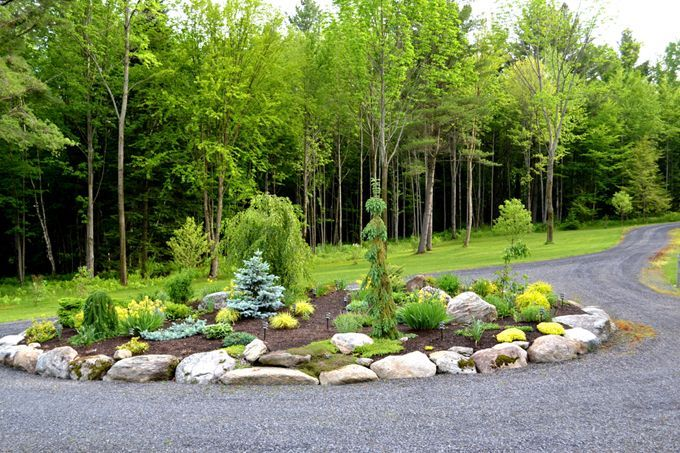 Circular driveway evergreen landscaping ideas conifers pinterest landscaping solar and - Evergreen landscaping ideas ...