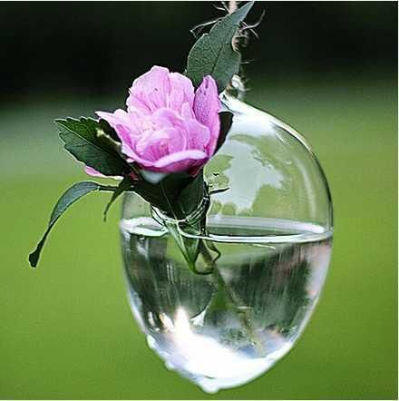 платяной яйцевидной формы цветочная ваза dia85xH120mm, прозрачной стеклянной вазе с потолка