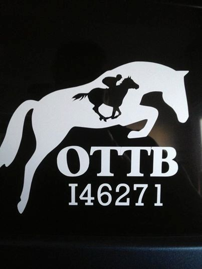 Custom vinyl decals for vehicle, tack trunk, trailer, home, laptop, or just about anywhere!! Strut your OTTB stuff with these high quality vinyl