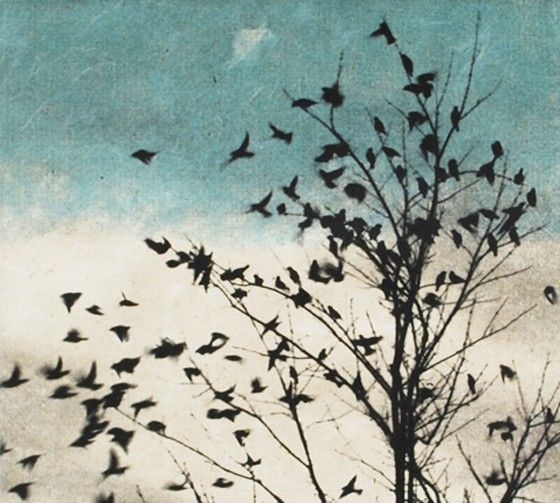 Art Print Etching February Visit Doves Fly Away by 88editions, $285.00