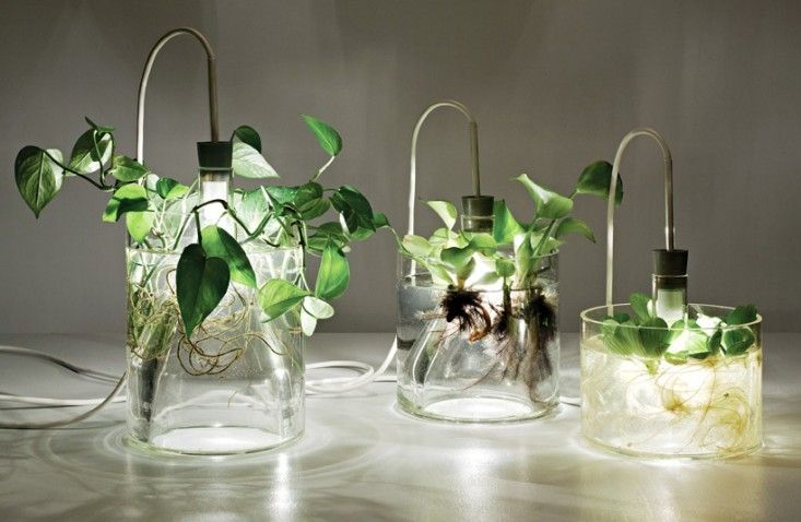 Lamp Recycling - Mixing electricity and water isn't a practice that we'd normally advise, but in the case of a series of light fixtures designed byMiriam Aust, the two are