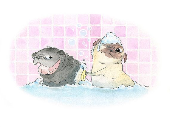Rub-a-Chub-Chub, Two Pugs in a Tub! - Cute Pug Bath Art Print & Bathroom Decor from an original Ink and Watercolor painting by InkPug! on Etsy, $12.00