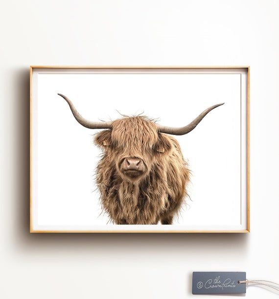 Highland Cow Print Digital Download Modern Farmhouse Wall Etsy Highland Cow Print Highland Cow Wall Art Prints