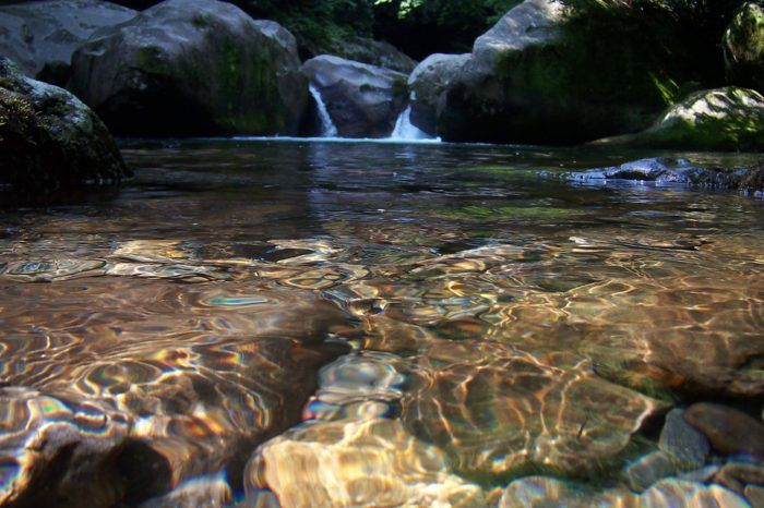 The Incredible Mountain-Fed Pool In North Carolina You Absolutely Need To Visit