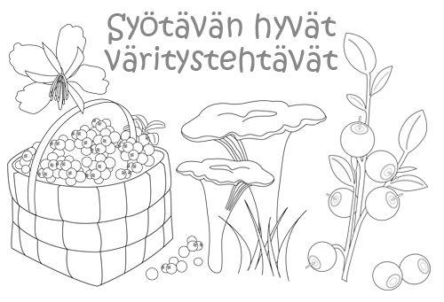 Arktiset aromit - Syötävän hyvät väritystehtävät