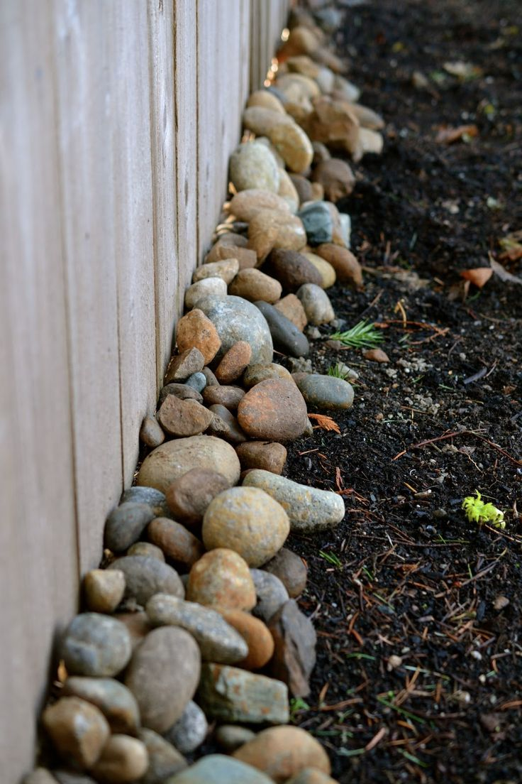 perhaps a solution to the gaps under the fence landscaping ideasprivacy - Garden Ideas Along Fence Line