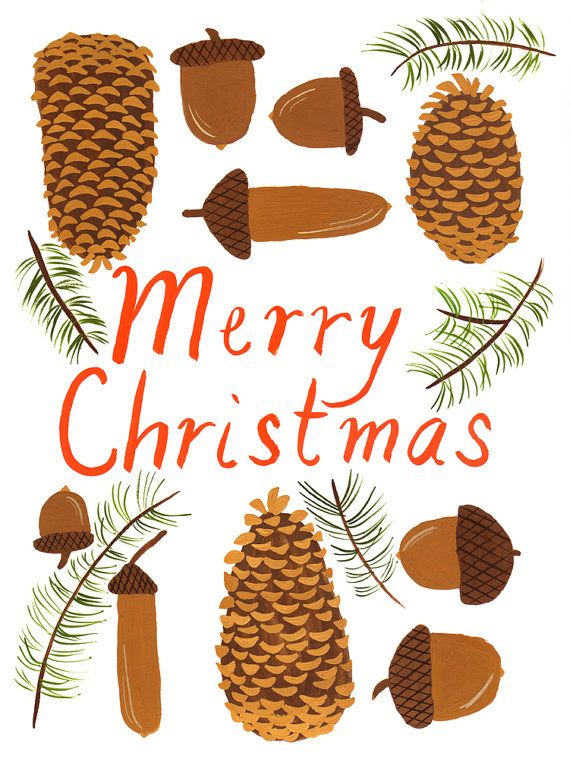 Cones and Acorns // Merry Christmas Card Set of by smalladventure
