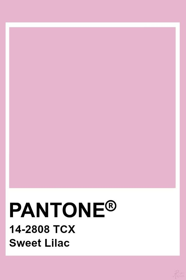 Master Bedroom Colors 2020