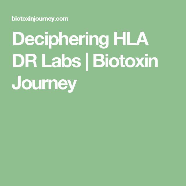 Deciphering HLA DR Labs | Biotoxin Journey