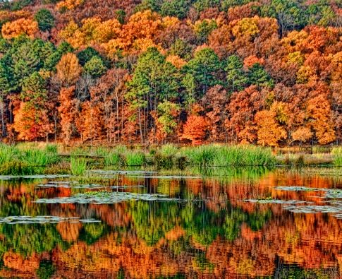 Clayton Lake State Park, located in southeastern Oklahoma's Kiamichi Mountains, features 500 acres of  hardwood forest and beautiful scenery perfect for camping, hiking, fishing and other outdoor activities.